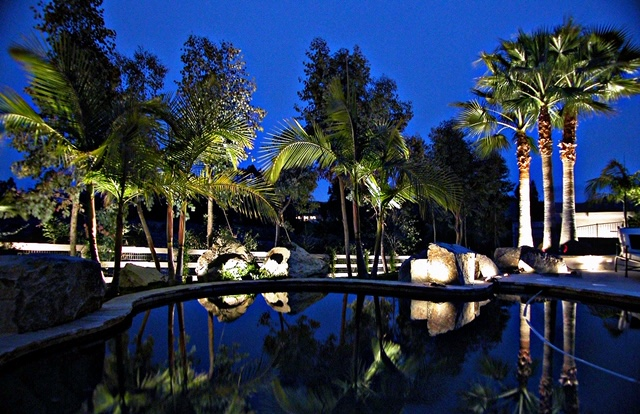 Residential landscape lighting around outdoor pool at night