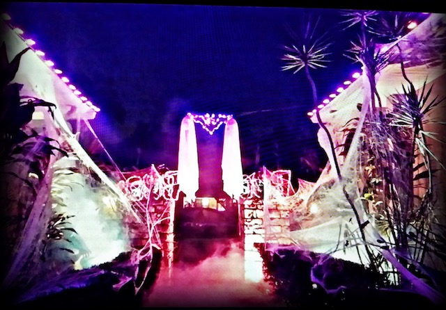spooky purple halloween lighting with fake cobwebs and smoke machine